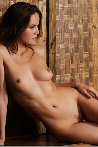 Sexy Brunette Camilla Poses Naked On An Armchair